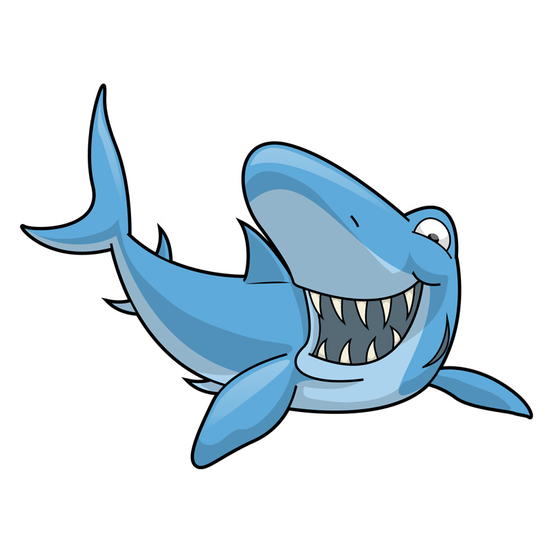 L24 Bradley The Blue Shark